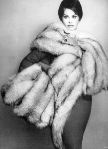marbella escorts fur stoal